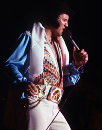 elvis_in_concerto_biografia_la_carriera